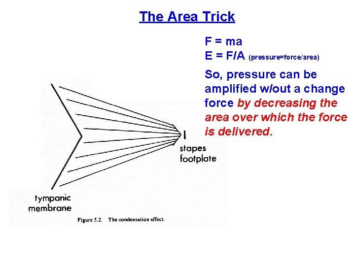 The Area Trick F = ma E = F/A (pressure=force/area) So, pressure can be