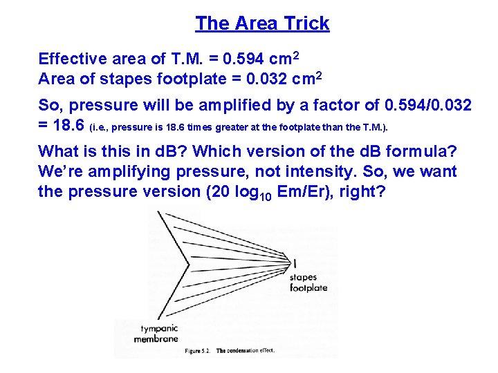 The Area Trick Effective area of T. M. = 0. 594 cm 2 Area