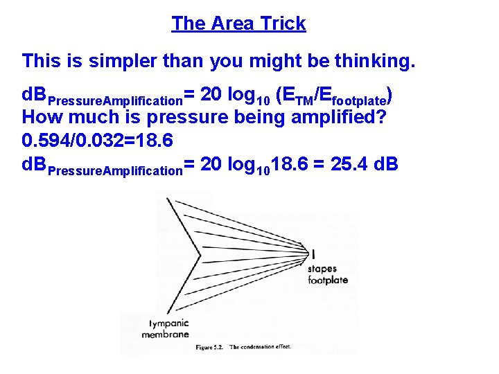 The Area Trick This is simpler than you might be thinking. d. BPressure. Amplification=