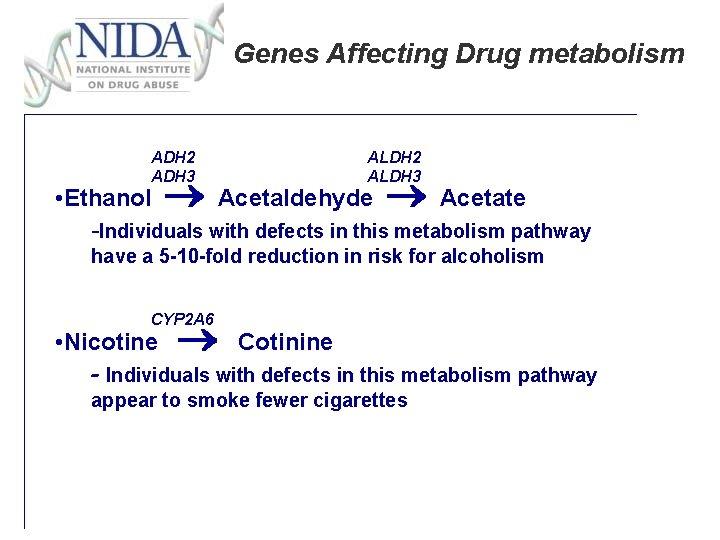 Genes Affecting Drug metabolism ADH 2 ADH 3 ALDH 2 ALDH 3 • Ethanol