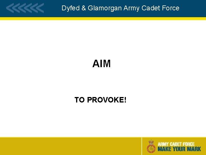 Dyfed & Glamorgan Army Cadet Force AIM TO PROVOKE!