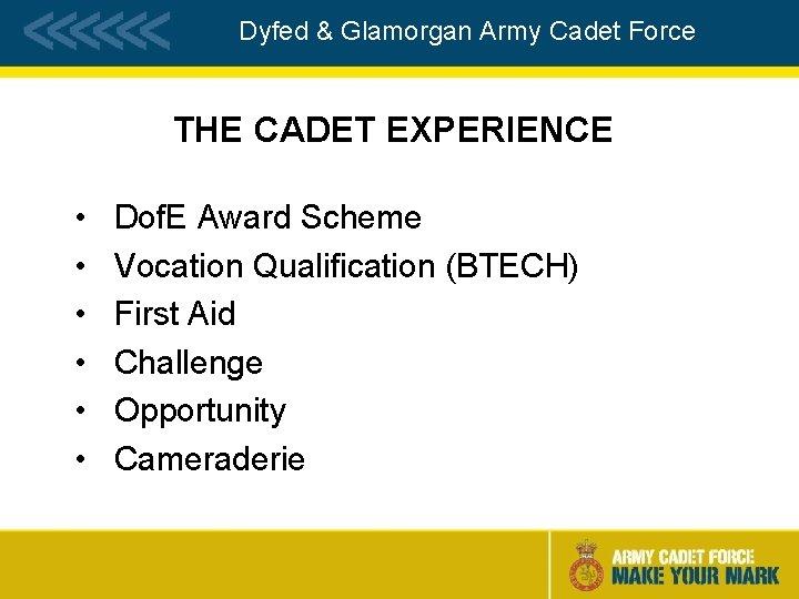 Dyfed & Glamorgan Army Cadet Force THE CADET EXPERIENCE • • • Dof. E