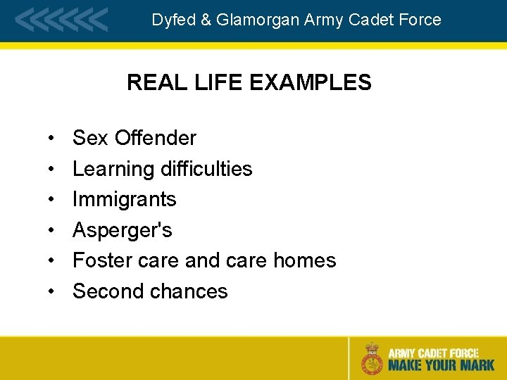 Dyfed & Glamorgan Army Cadet Force REAL LIFE EXAMPLES • • • Sex Offender
