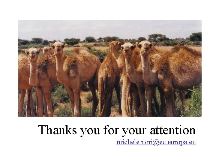 Thanks you for your attention michele. nori@ec. europa. eu