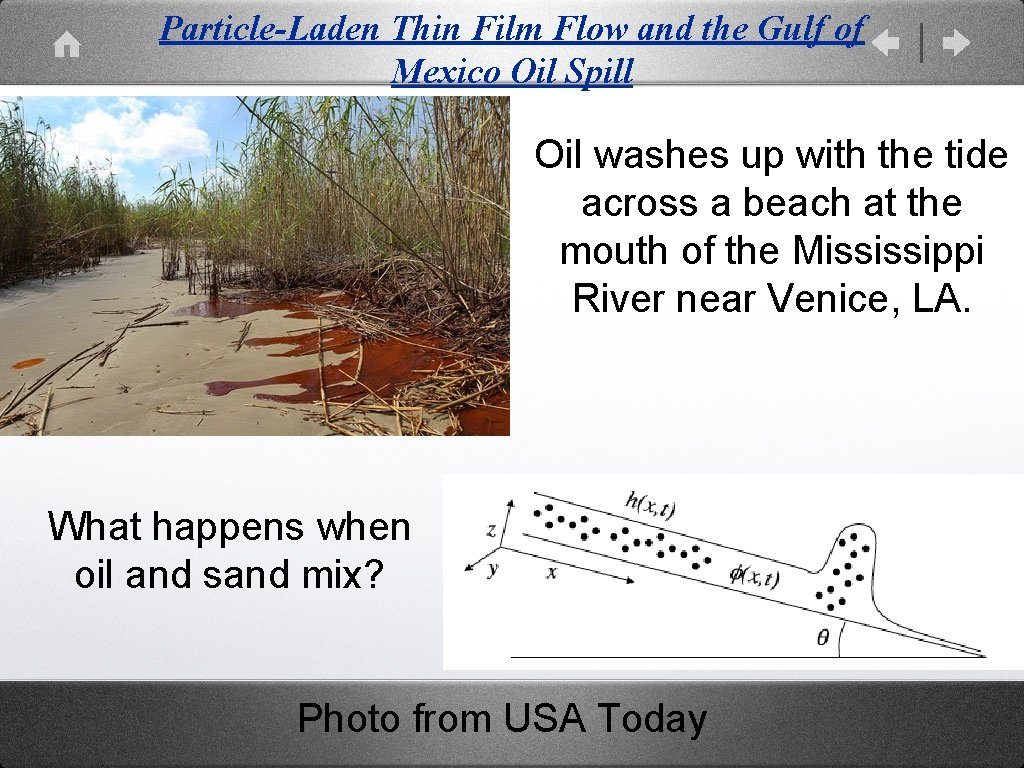 Particle-Laden Thin Film Flow and the Gulf of Mexico Oil Spill Oil washes up