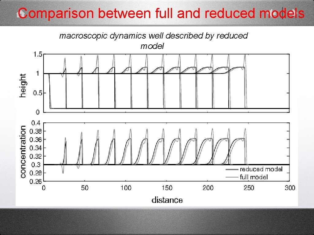 Comparison between full and reduced models macroscopic dynamics well described by reduced model full