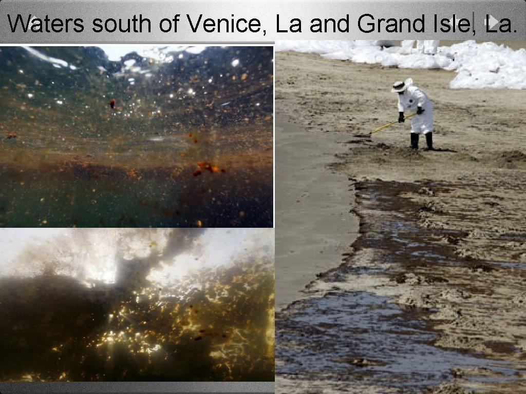 Waters south of Venice, La and Grand Isle, La.