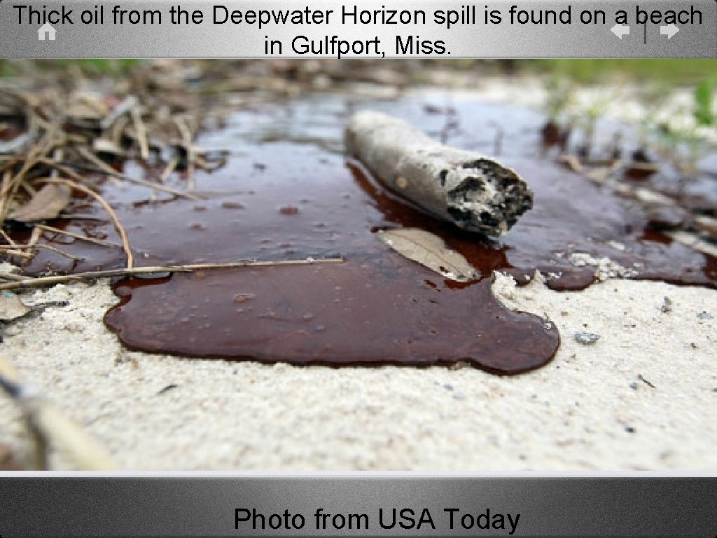 Thick oil from the Deepwater Horizon spill is found on a beach in Gulfport,