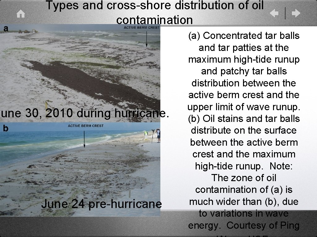 Types and cross-shore distribution of oil contamination June 30, 2010 during hurricane. June 24