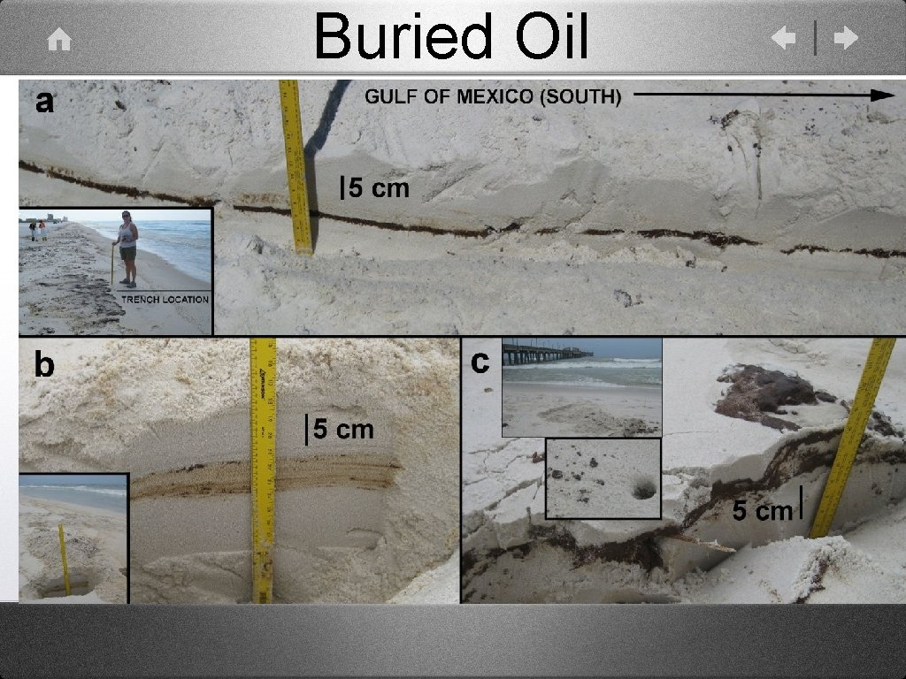 Buried Oil