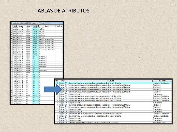 TABLAS DE ATRIBUTOS