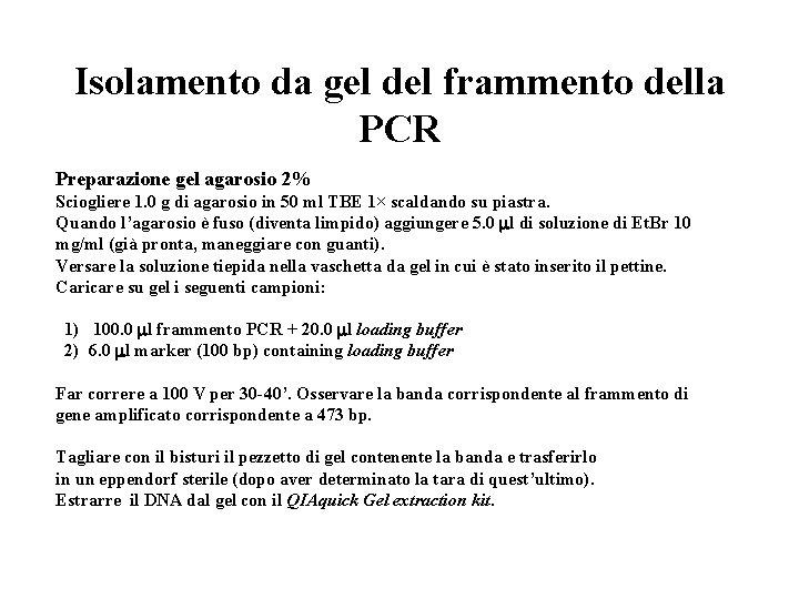 Isolamento da gel del frammento della PCR Preparazione gel agarosio 2% Sciogliere 1. 0
