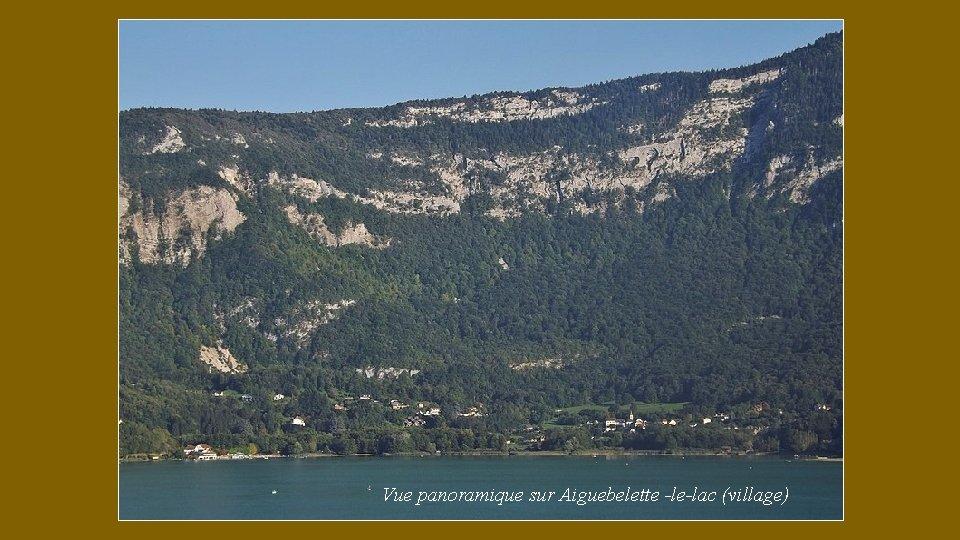 Vue panoramique sur Aiguebelette -le-lac (village)