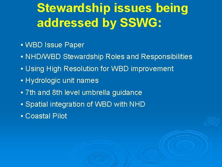 Stewardship issues being addressed by SSWG: • WBD Issue Paper • NHD/WBD Stewardship Roles