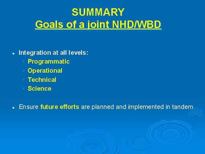 SUMMARY Goals of a joint NHD/WBD l l Integration at all levels: • Programmatic
