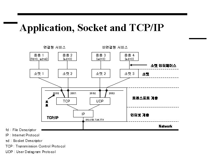 Application, Socket and TCP/IP 연결형 서비스 비연결형 서비스 응용 1 응용 2 응용 3