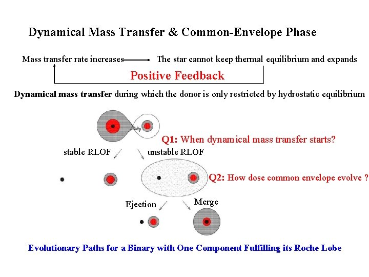 Dynamical Mass Transfer & Common-Envelope Phase Mass transfer rate increases The star cannot keep