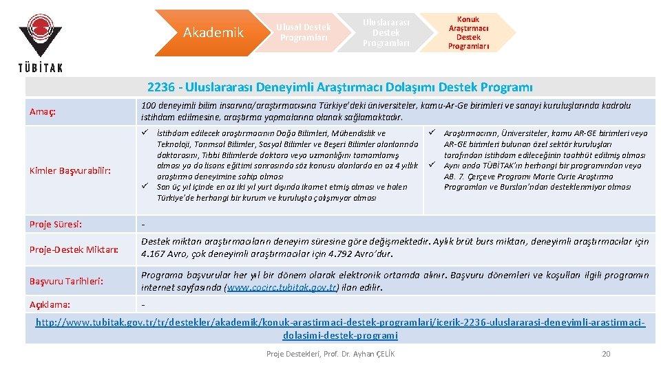 Akademik Ulusal Destek Programları Uluslararası Destek Programları Konuk Araştırmacı Destek Programları 2236 - Uluslararası
