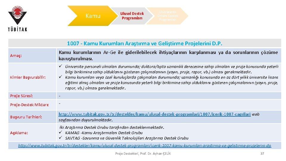 Kamu Ulusal Destek Programları Uluslararası Ortaklı Destek Programları 1007 - Kamu Kurumları Araştırma ve
