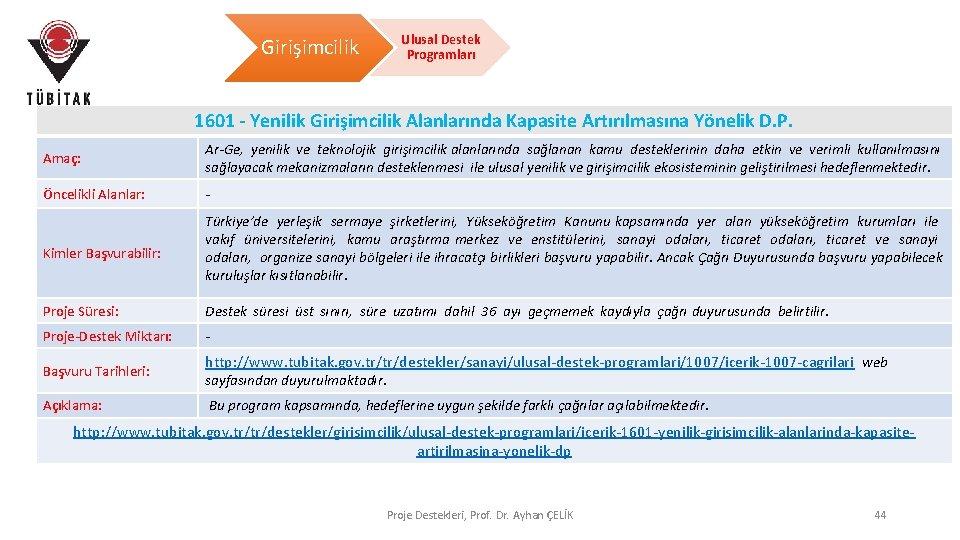 Girişimcilik Ulusal Destek Programları 1601 - Yenilik Girişimcilik Alanlarında Kapasite Artırılmasına Yönelik D. P.