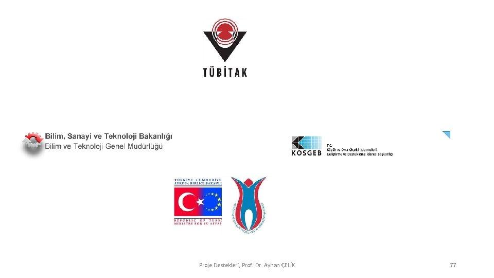 Proje Destekleri, Prof. Dr. Ayhan ÇELİK 77