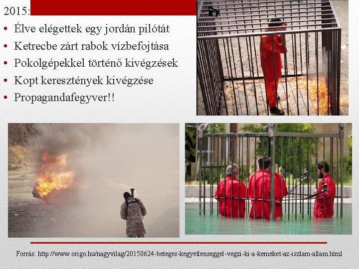 2015: • Élve elégettek egy jordán pilótát • Ketrecbe zárt rabok vízbefojtása • Pokolgépekkel