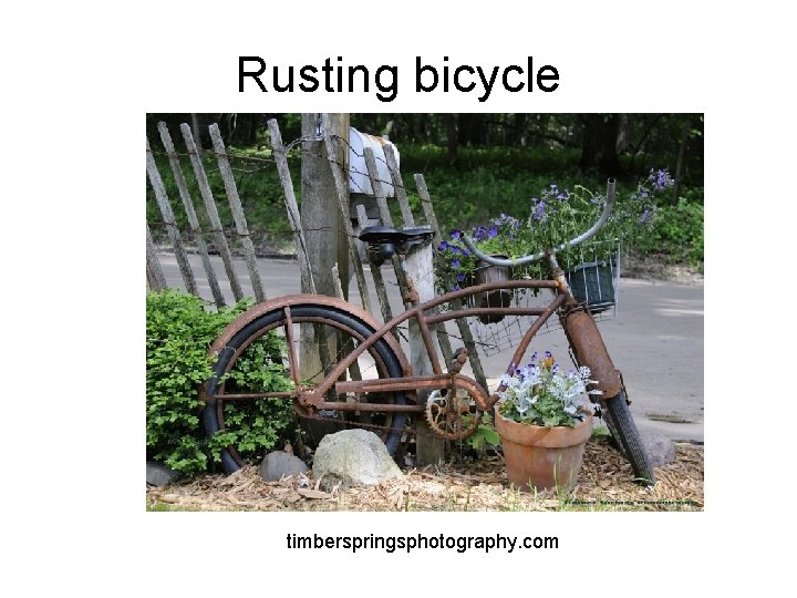 Rusting bicycle timberspringsphotography. com