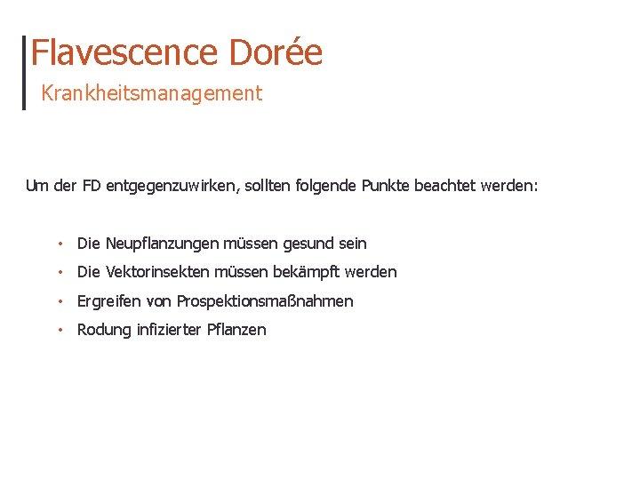 Flavescence Dorée Krankheitsmanagement Um der FD entgegenzuwirken, sollten folgende Punkte beachtet werden: • Die
