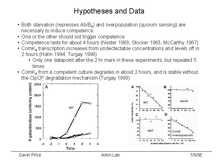 Hypotheses and Data • Both starvation (represses Abr. B 4) and overpopulation (quorum sensing)