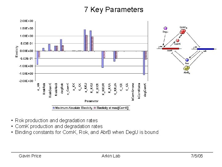 7 Key Parameters • Rok production and degradation rates • Com. K production and