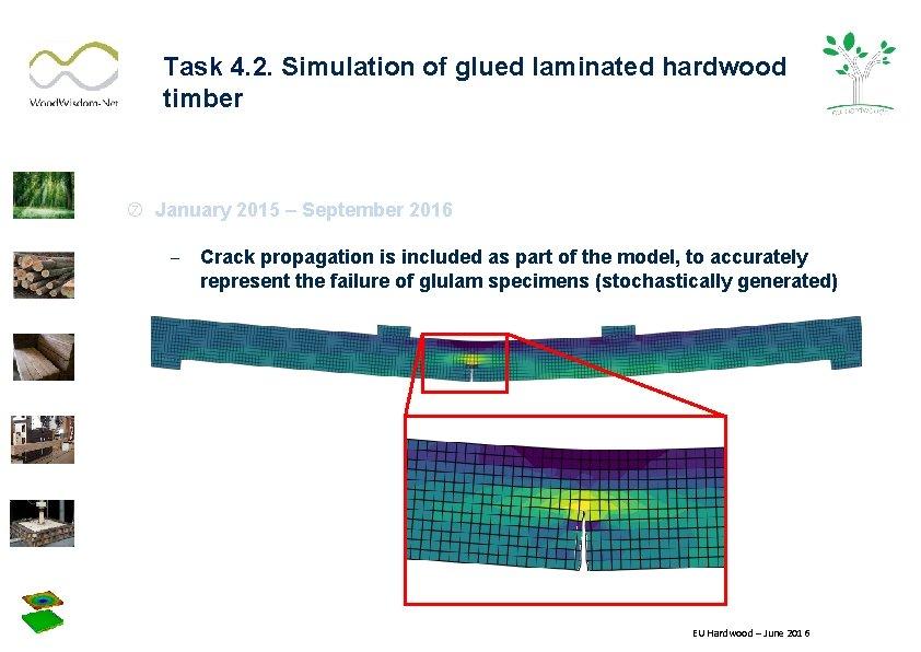 Task 4. 2. Simulation of glued laminated hardwood timber January 2015 – September 2016