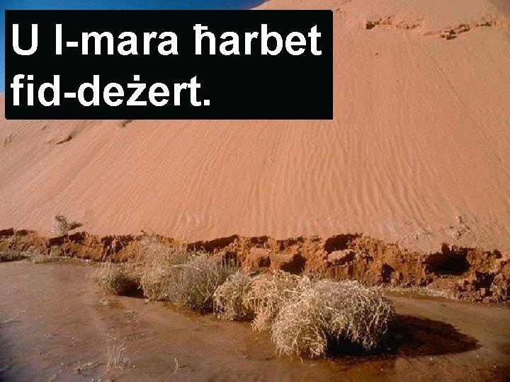 U l-mara ħarbet fid-deżert.