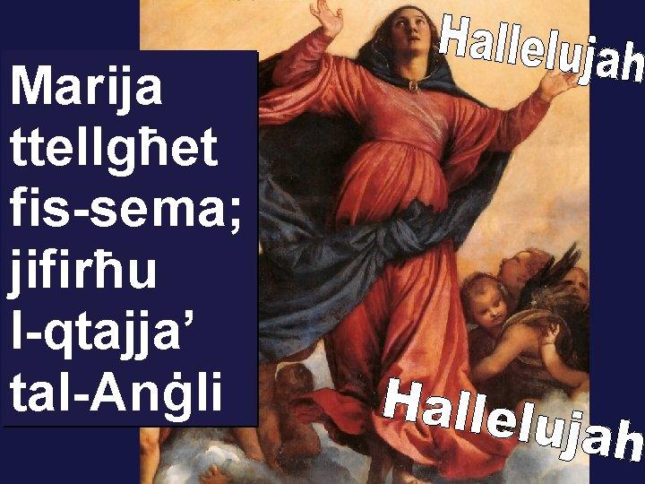 Marija ttellgħet fis-sema; jifirħu l-qtajja' tal-Anġli