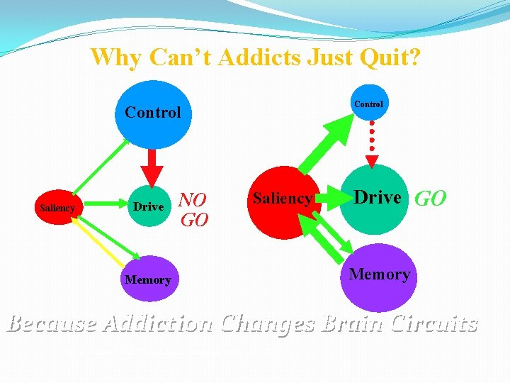 Why Can't Addicts Just Quit? Addicted Brain Non-Addicted Brain Control Saliency Drive NO GO
