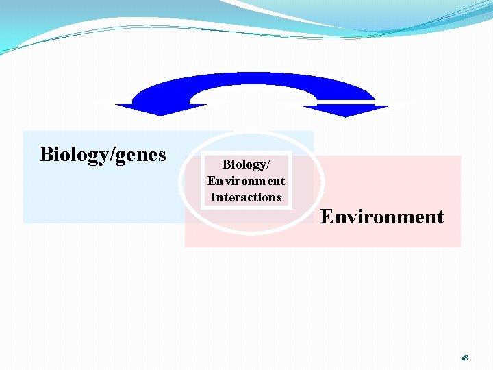 Biology/genes Biology/ Environment Interactions Environment 18