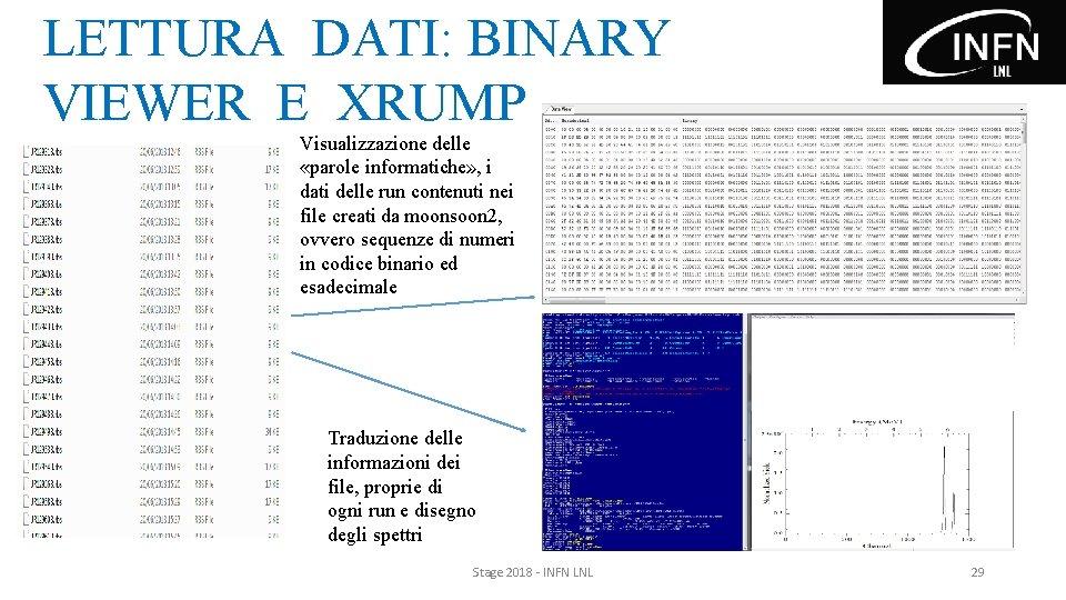 LETTURA DATI: BINARY VIEWER E XRUMP Visualizzazione delle «parole informatiche» , i dati delle