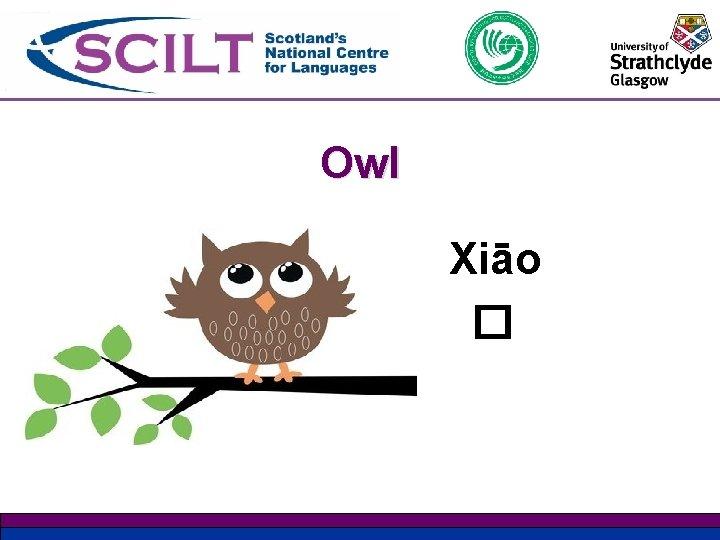 Owl Xiāo �