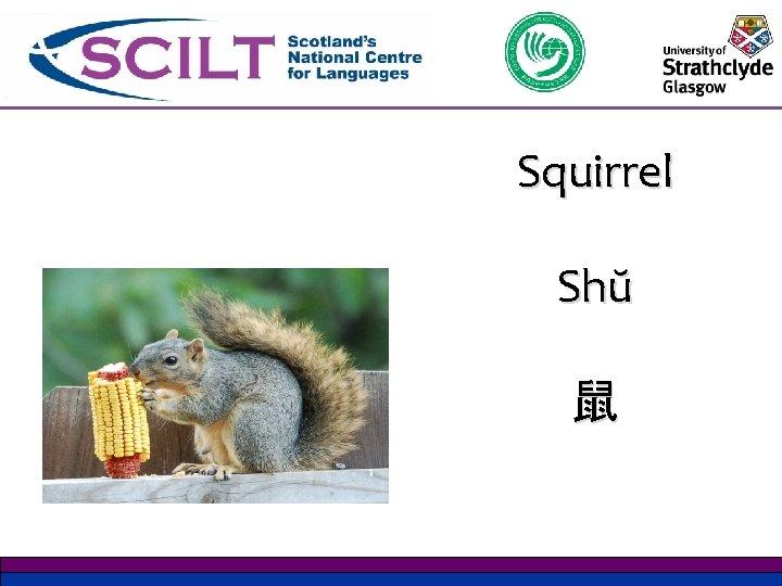 Squirrel Shŭ 鼠