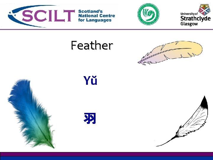 Feather Yŭ 羽