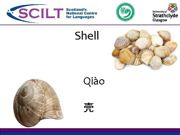 Shell Qiào 壳
