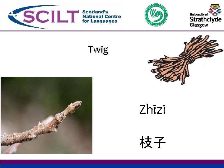 Twig Zhīzi 枝子