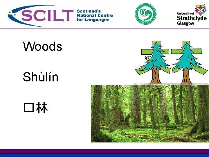 Woods Shùlín �林