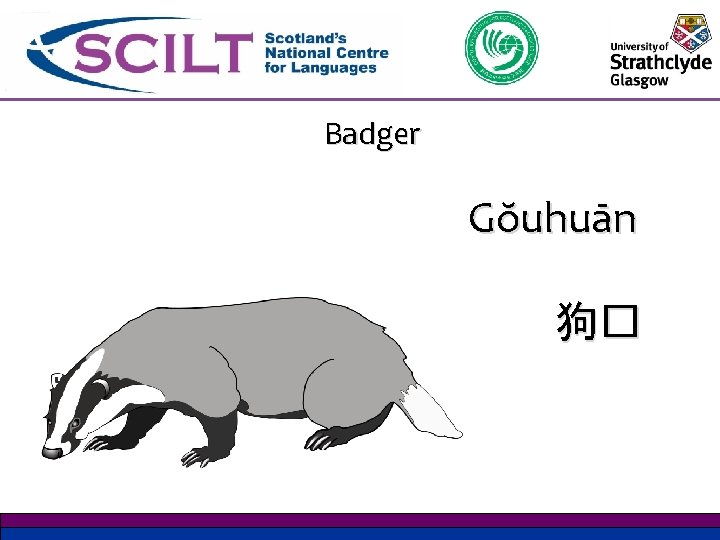 Badger Gŏuhuān 狗�
