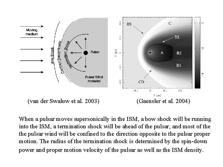 (van der Swaluw et al. 2003) (Gaensler et al. 2004) When a pulsar moves