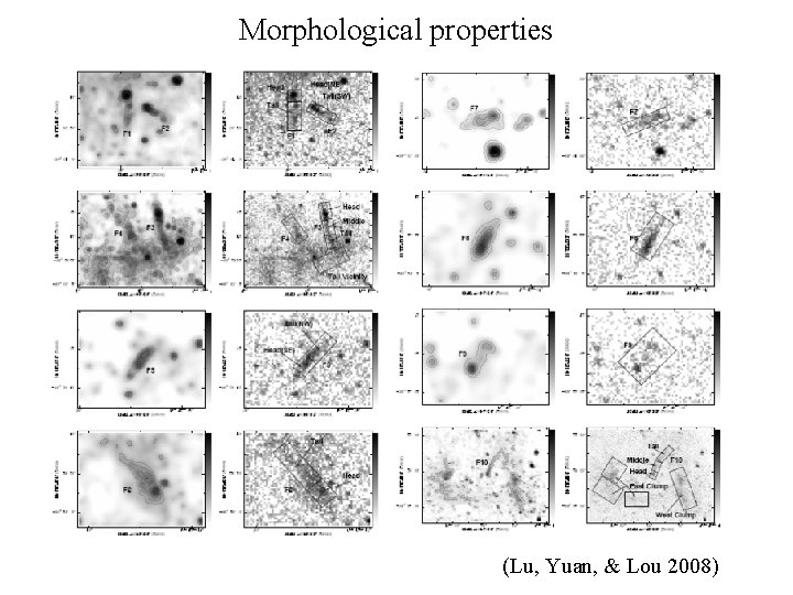 Morphological properties (Lu, Yuan, & Lou 2008)