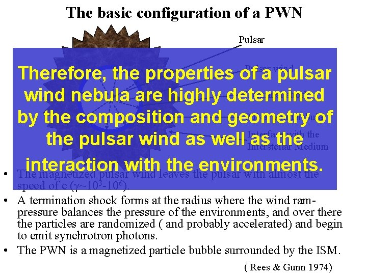 The basic configuration of a PWN Pulsar • Pulsar wind Therefore, the properties of