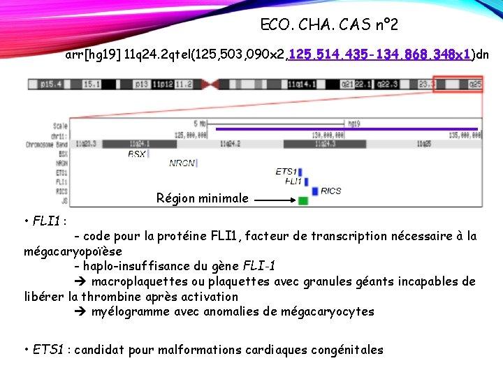 ECO. CHA. CAS n° 2 arr[hg 19] 11 q 24. 2 qtel(125, 503, 090