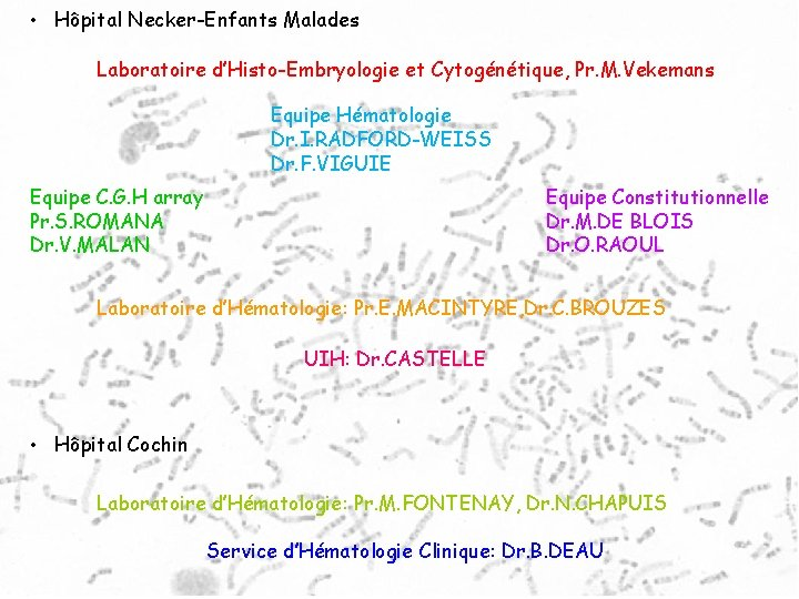 • Hôpital Necker-Enfants Malades Laboratoire d'Histo-Embryologie et Cytogénétique, Pr. M. Vekemans Equipe Hématologie