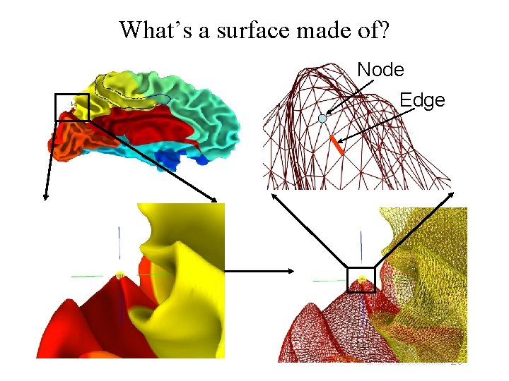 What's a surface made of? Node Edge 20 29 Oct 2009 SSCC/NIMH