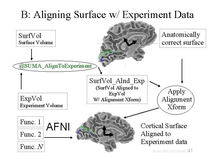 B: Aligning Surface w/ Experiment Data Anatomically correct surface Surf. Vol Surface Volume @SUMA_Align.
